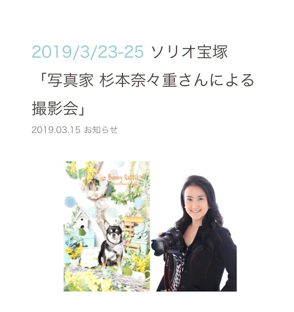 f:id:ko-kakuno:20190325105639j:image
