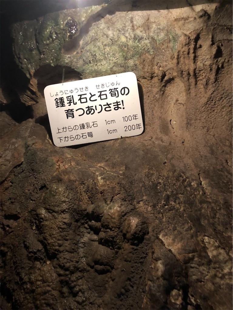 f:id:ko-kakuno:20190510225400j:image