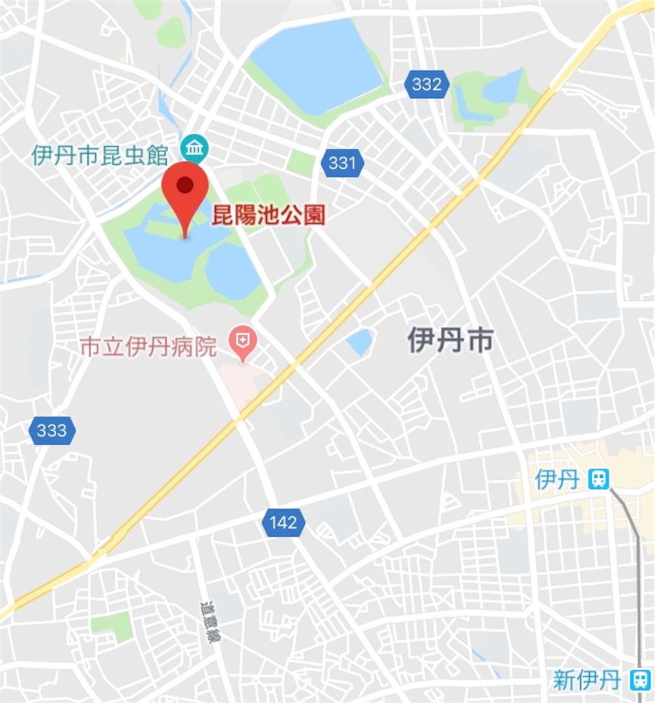 f:id:ko-kakuno:20190623205031j:image