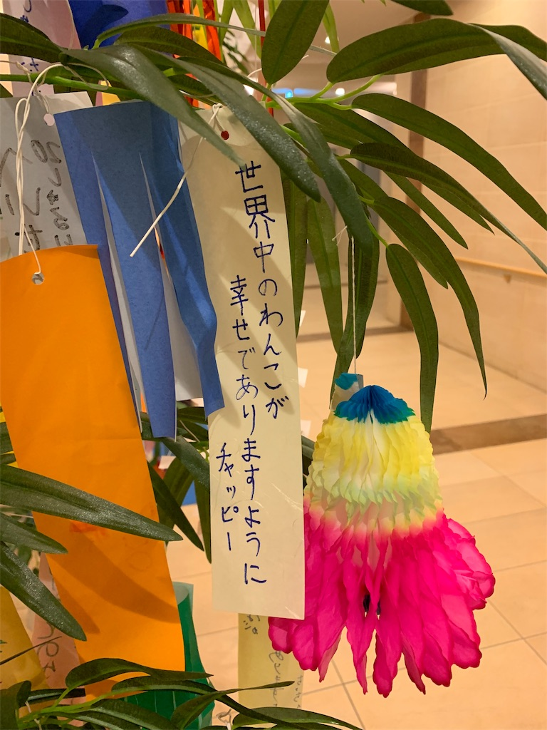 f:id:ko-kakuno:20190706230200j:image