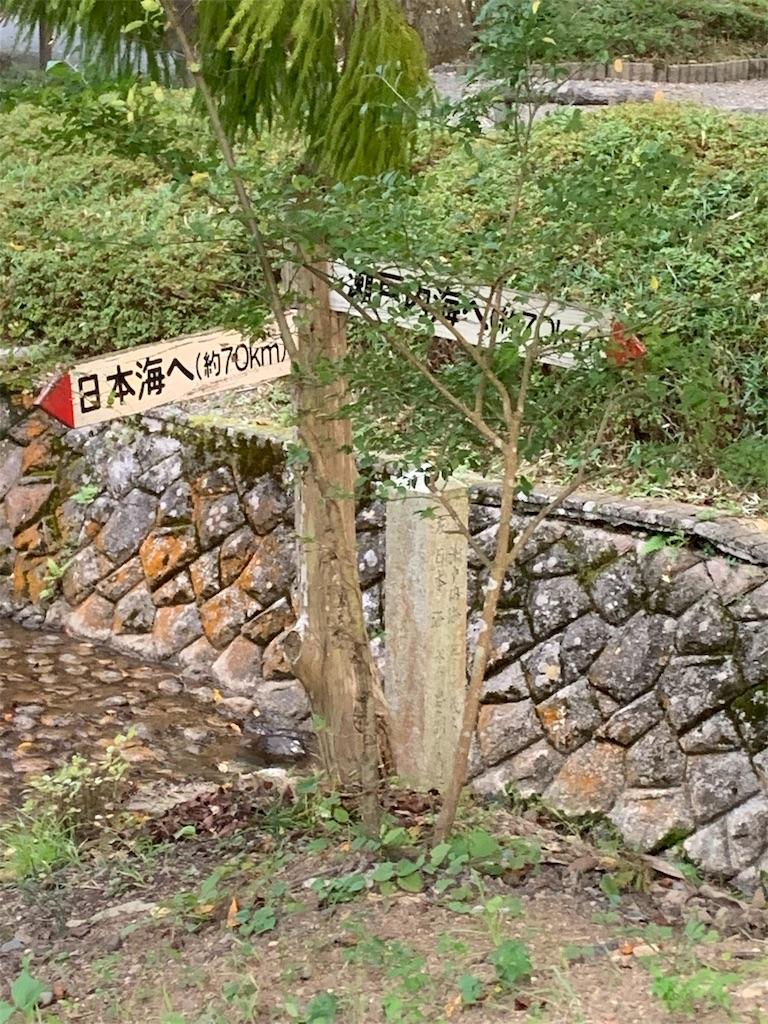 f:id:ko-kakuno:20191006195642j:image