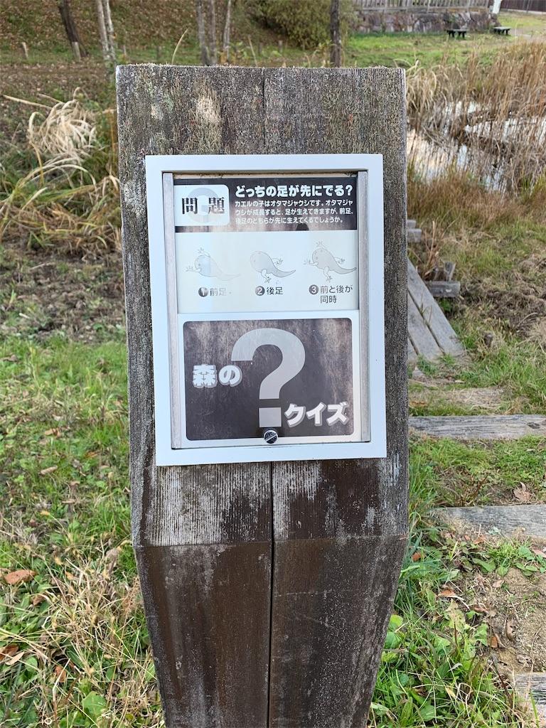 f:id:ko-kakuno:20191201190647j:image