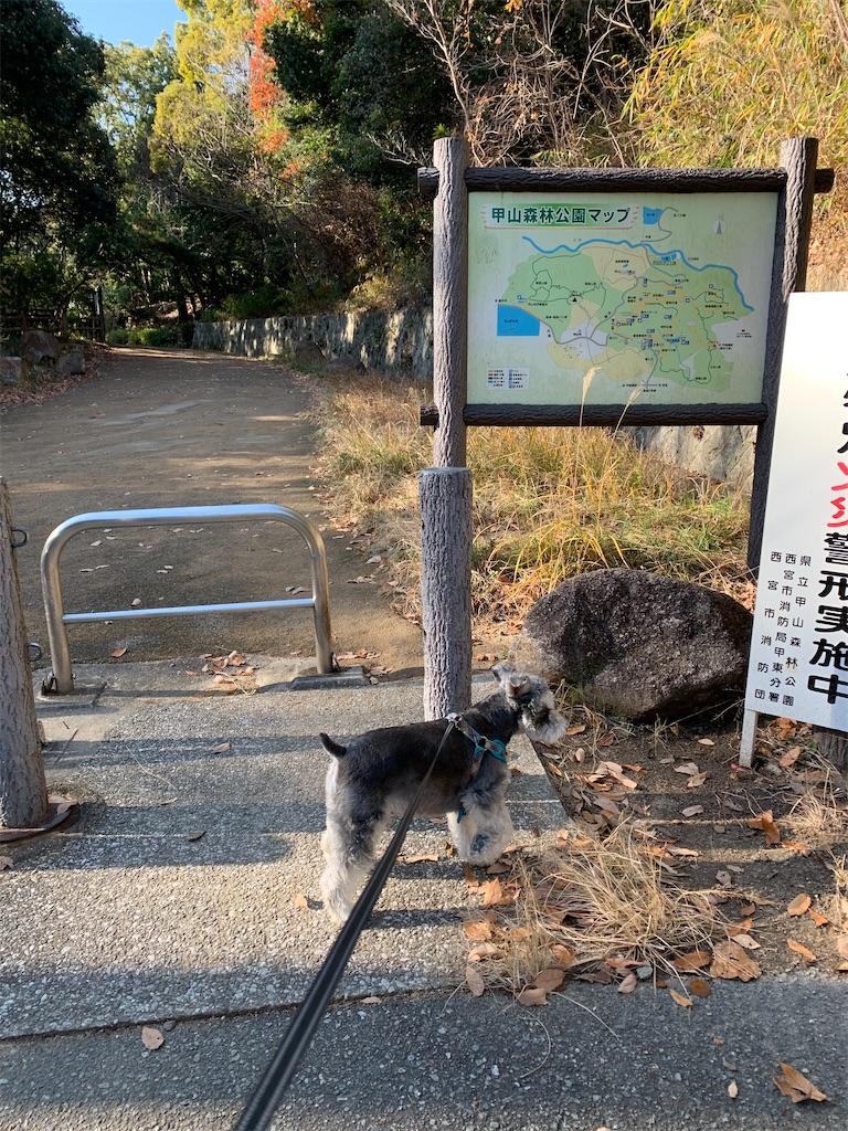 f:id:ko-kakuno:20191230112352j:image
