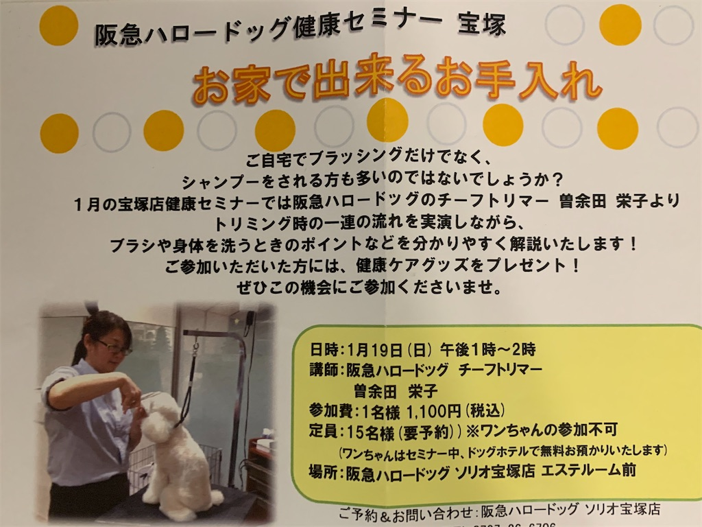 f:id:ko-kakuno:20200120231056j:image