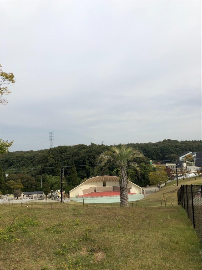 f:id:ko-kakuno:20201029234125j:image