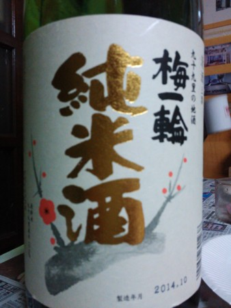 f:id:ko_koba:20141019212521j:image