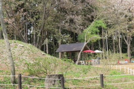 f:id:koba-sumiyoikai:20160410120320j:image