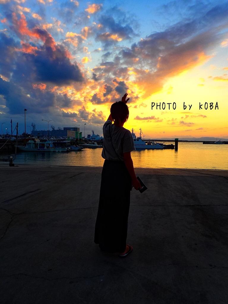 f:id:koba40:20161117002641j:image