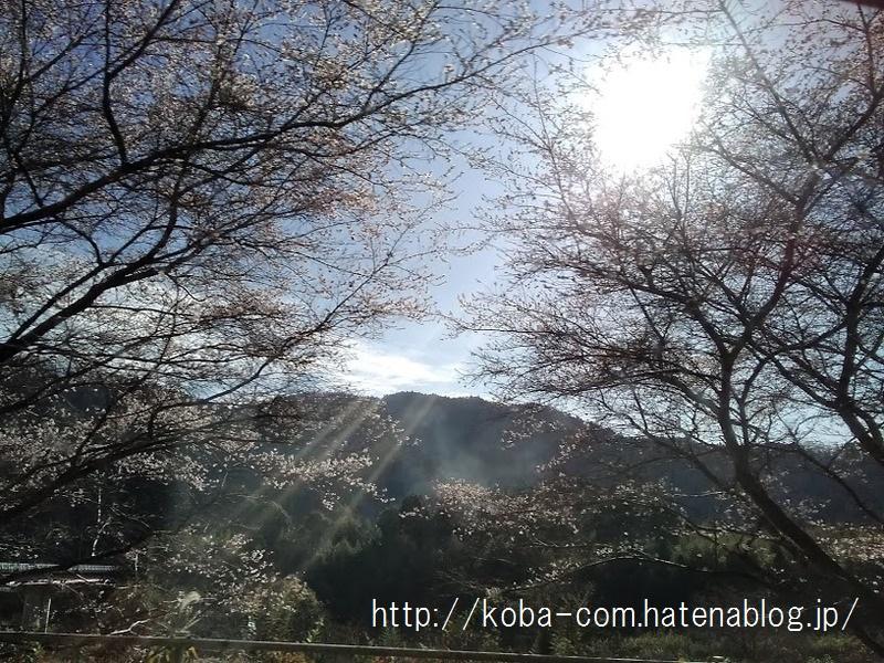 f:id:koba_dl_com:20200815153313j:plain