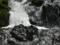 養老牛・養老の滝