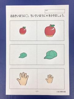 f:id:kobato-kyozai:20190525153001j:plain