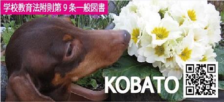 f:id:kobato-kyozai:20190920152555j:plain