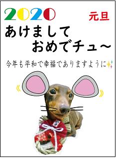 f:id:kobato-kyozai:20191223105851p:plain