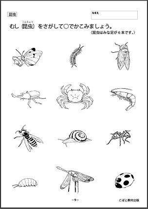 f:id:kobato-kyozai:20200325144032p:plain