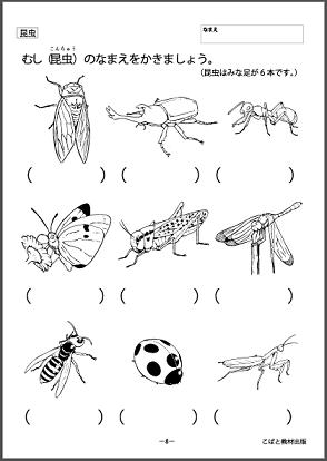 f:id:kobato-kyozai:20200325145022p:plain