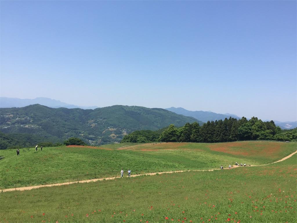 f:id:kobaton0029:20170520210345j:image