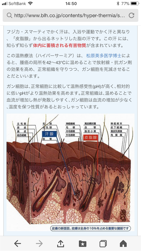 f:id:kobaton0029:20180202065932p:image