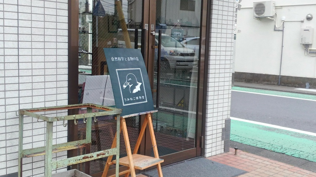 うみねこ博物堂