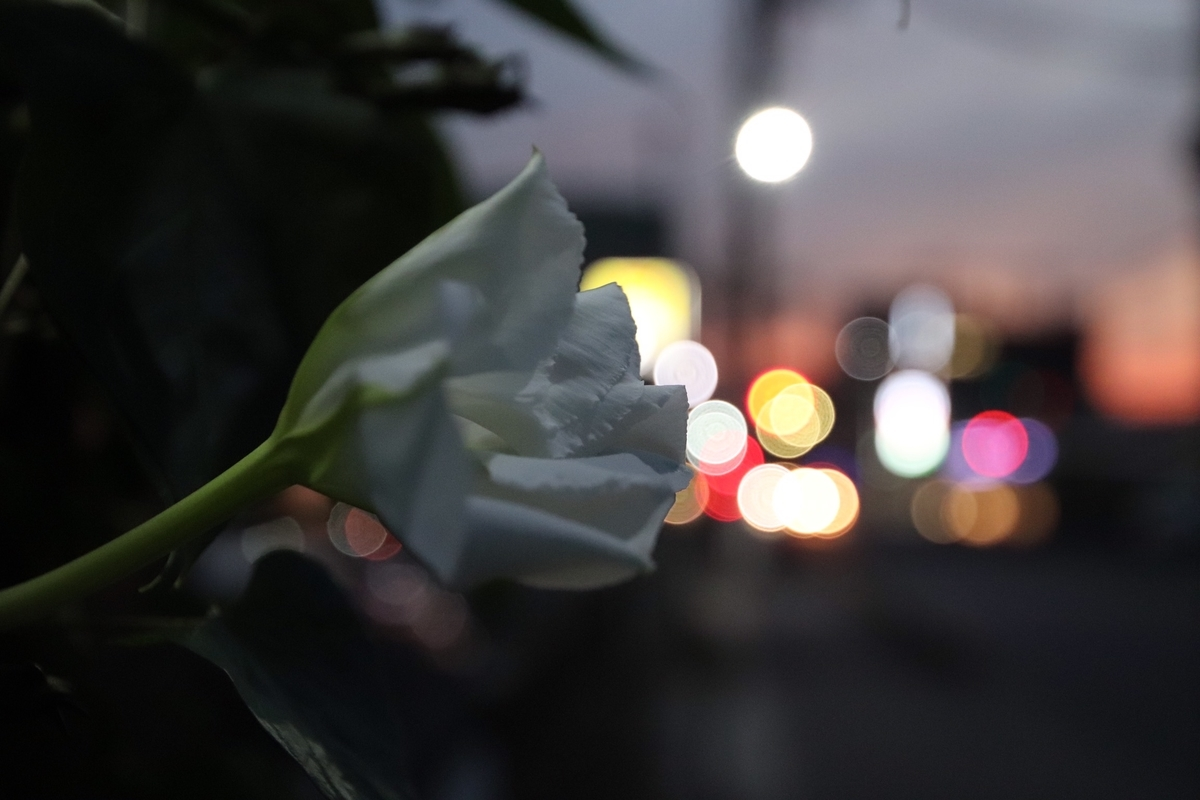 f:id:kobayashibuhinseisakusyo:20191016001821j:plain