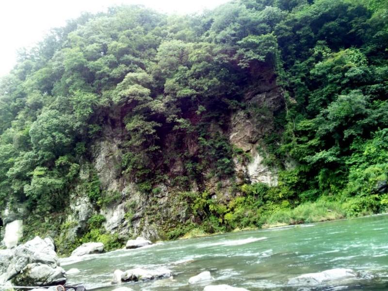 f:id:kobayashidagakki:20170816145648j:image