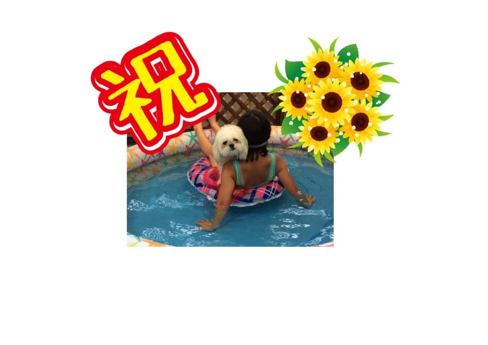 f:id:kobayuki0326:20170722200126j:plain