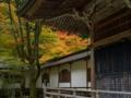 京都新聞写真コンテスト 延暦寺 浄土院の静寂な秋