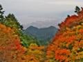 京都新聞写真コンテスト 比叡山山頂駅より琵琶湖を臨む