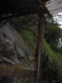 [2013-05-17][屋久島][縄文杉][登山]