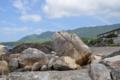 [2013-05-18][温泉][平内海中温泉][屋久島]