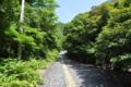 [2013-05-18][屋久島]