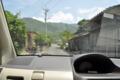 [2013-05-18][木][ガジュマル][屋久島]