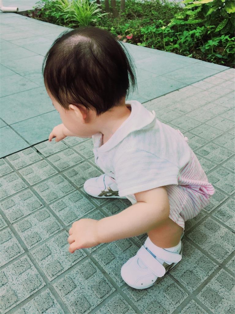 f:id:kobeoyaji:20170819220017j:image