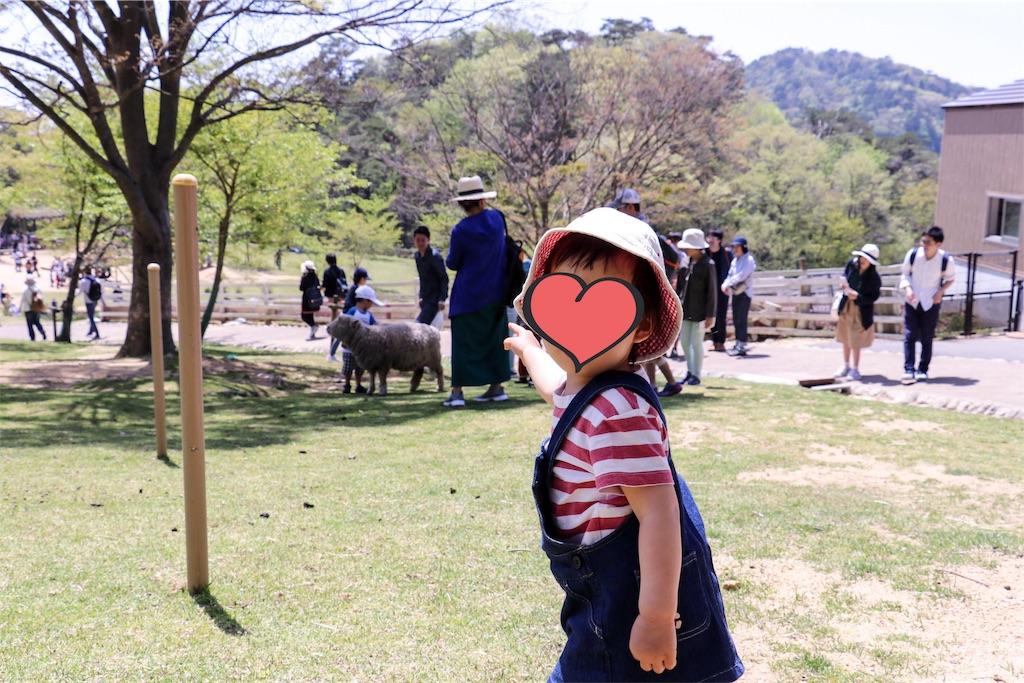 f:id:kobeoyaji:20180509215857j:image