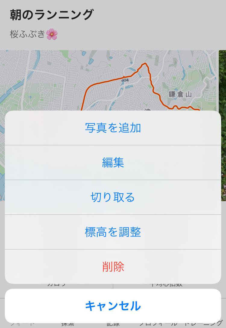 f:id:kobitoku:20210401074218j:plain