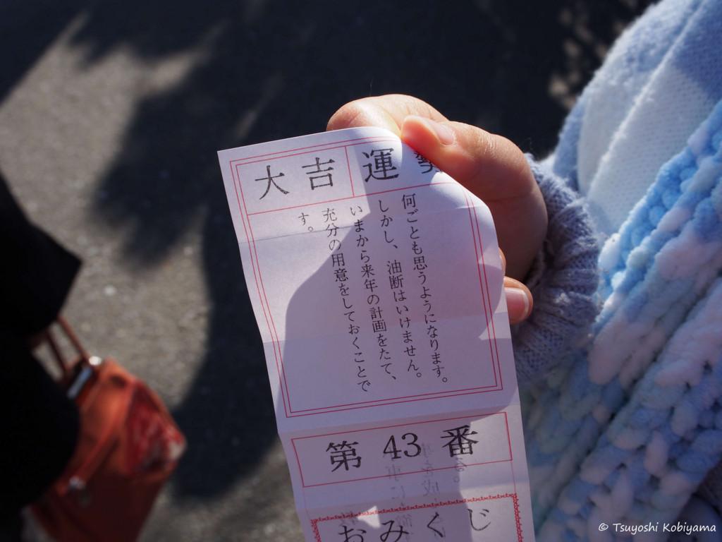 f:id:kobiyama:20170101104014j:plain