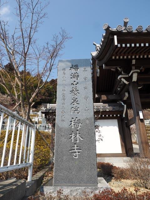f:id:kobiyama:20170306234411j:plain