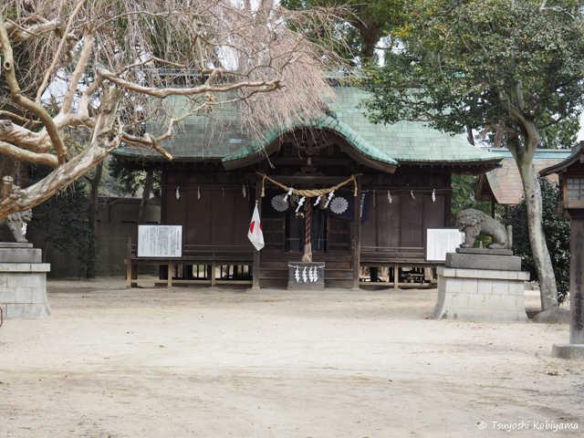 f:id:kobiyama:20170326113340j:plain