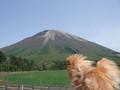 2008/5 鳥取・大山にて。