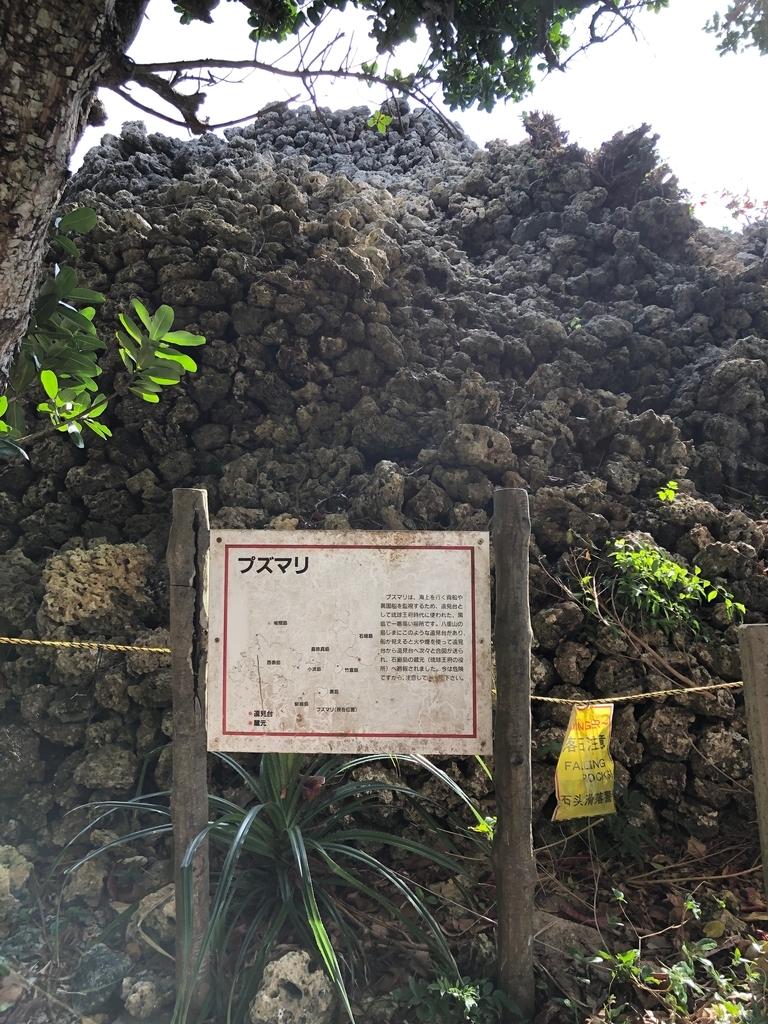 f:id:kobun2ki:20190219114926j:plain
