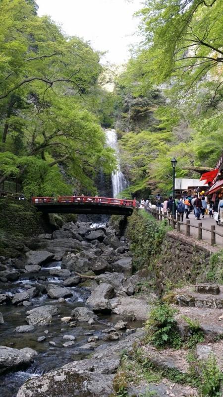f:id:kobutahakase:20170428105939j:image