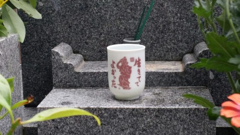 f:id:kobutahakase:20170825100520j:image