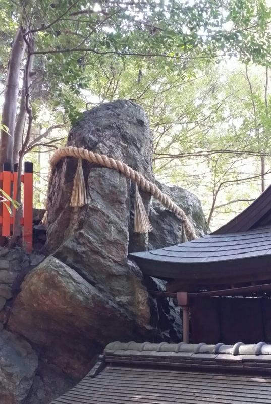 f:id:kobutahakase:20180216123433j:image