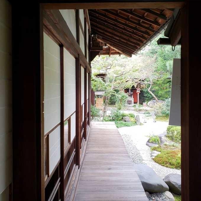 f:id:kobutahakase:20181019155631j:image