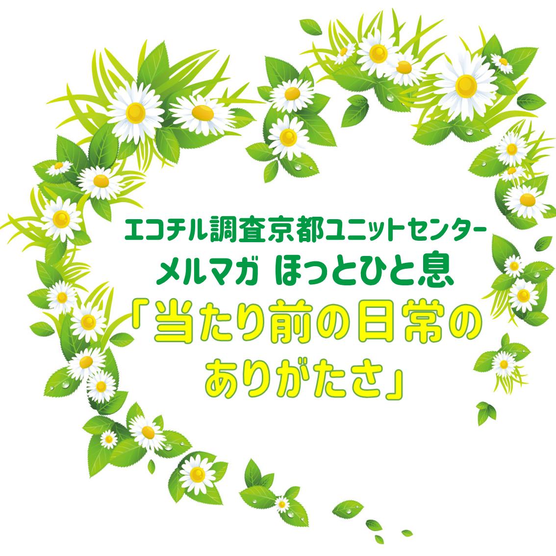 f:id:kochi-ecochil:20200324000044p:plain