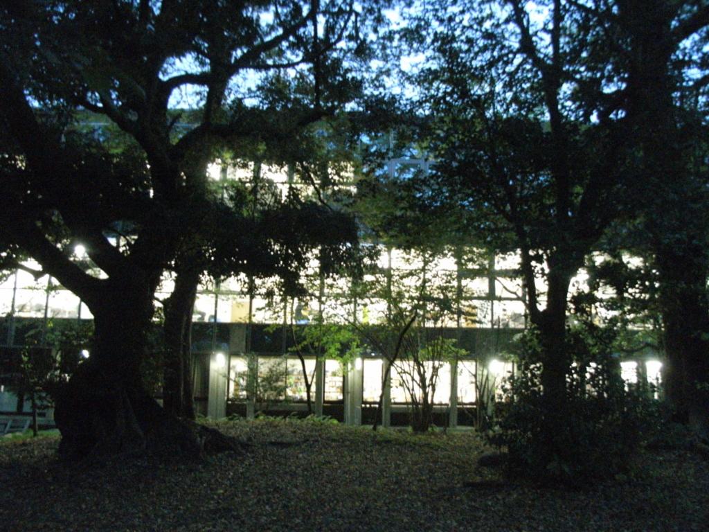 f:id:kochi-toshokan:20171107181109j:plain