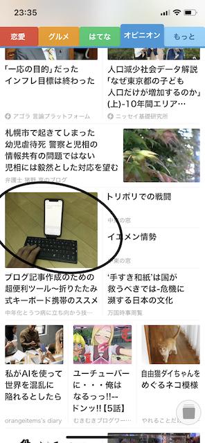 f:id:kochin-kun:20190611232431j:plain
