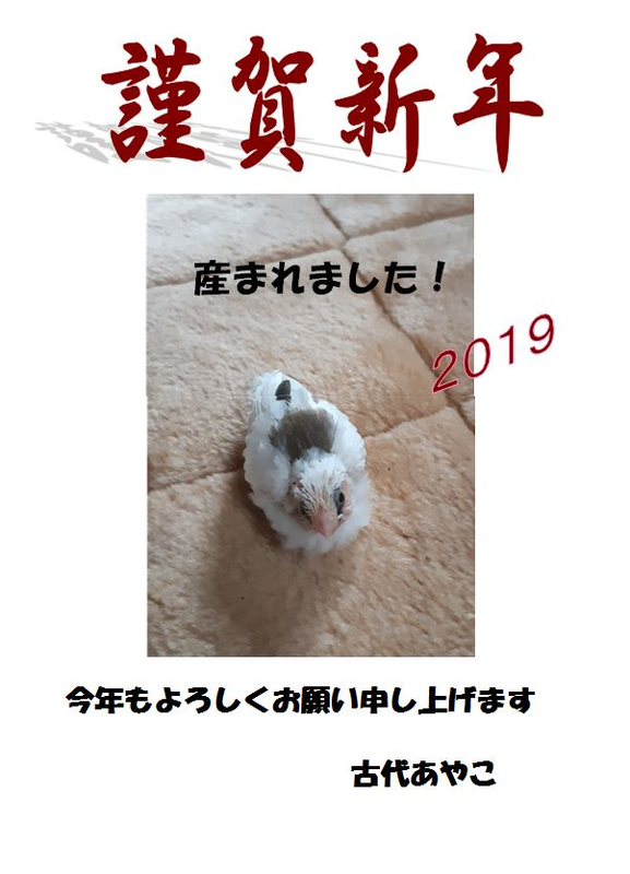 20190103180956