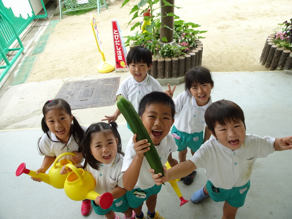 f:id:kodakara-kindergarten:20160628220715j:image:w360