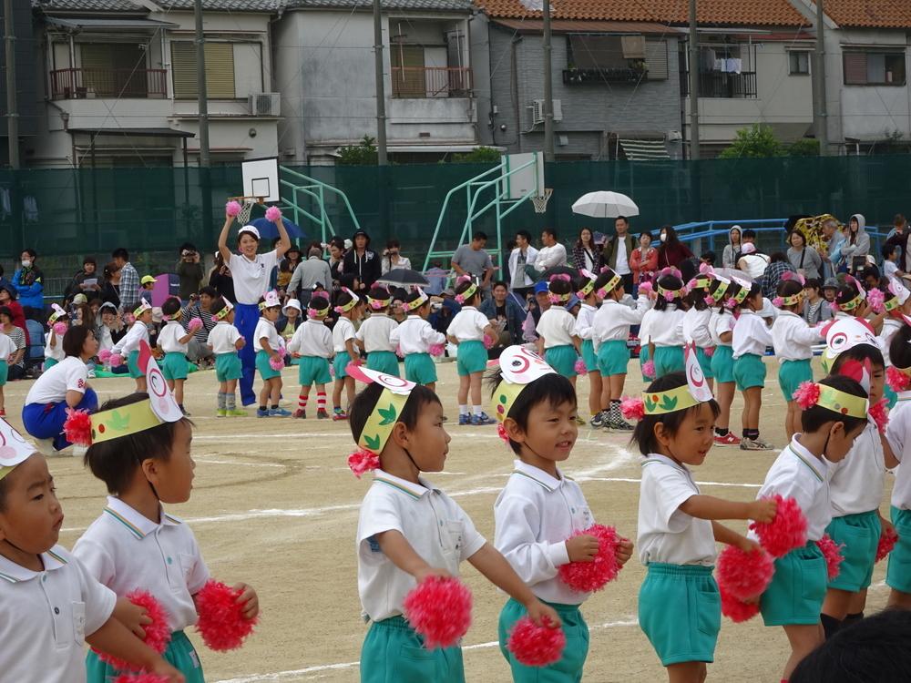 f:id:kodakara-kindergarten:20171019222149j:image:w320