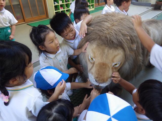 f:id:kodakara-kindergarten:20180903142612j:image:w320